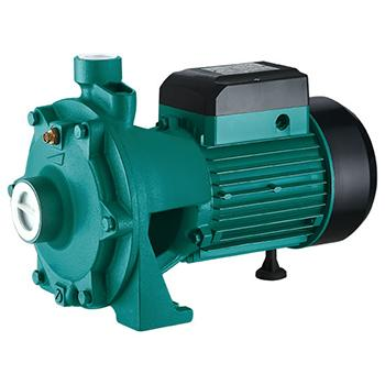2SGP(m) Centrifugal Pump